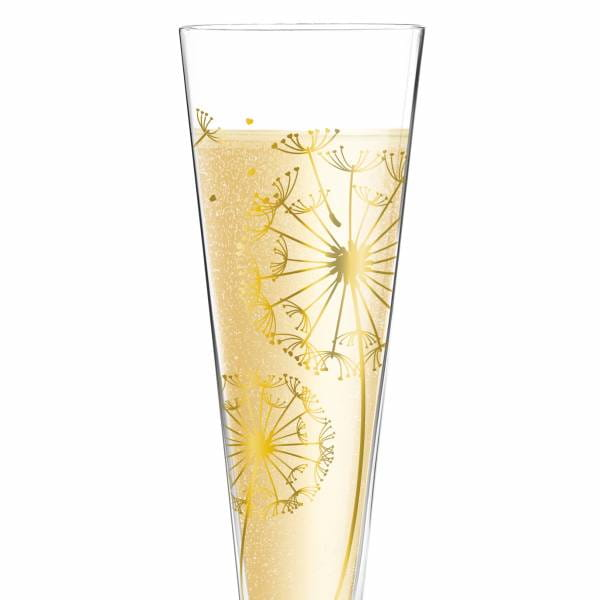 Champus Champagne Glass by Andrea Hilles